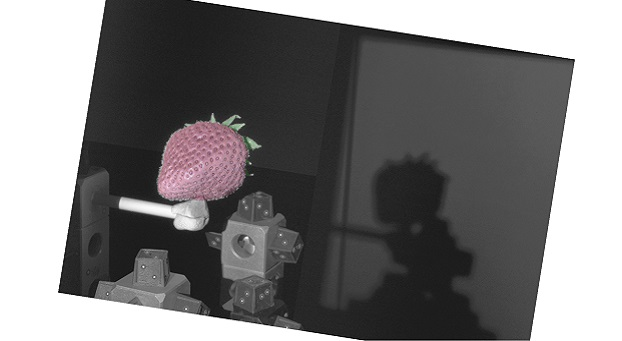 3D scan of strawberry